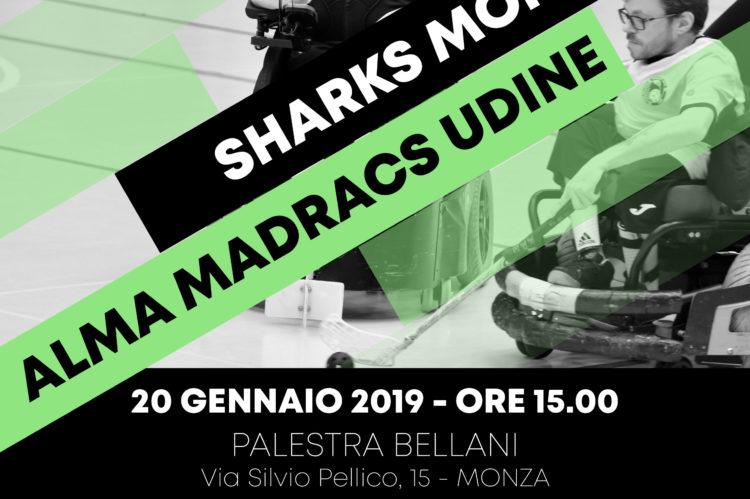 Madracs Udine - Sharks Monza